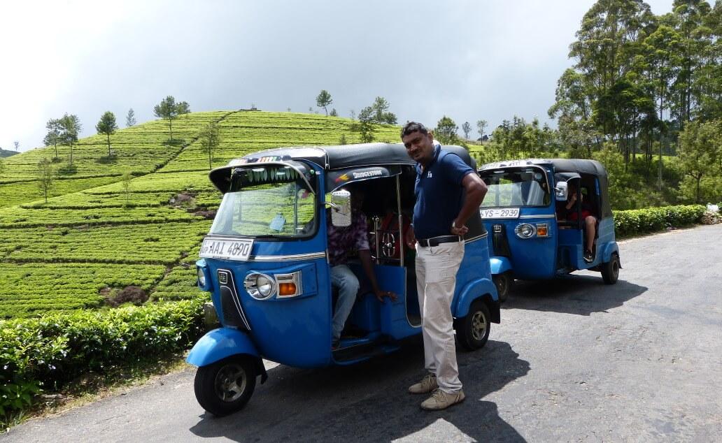 Srí Lanka s dětmi: Po stopách sira Liptona