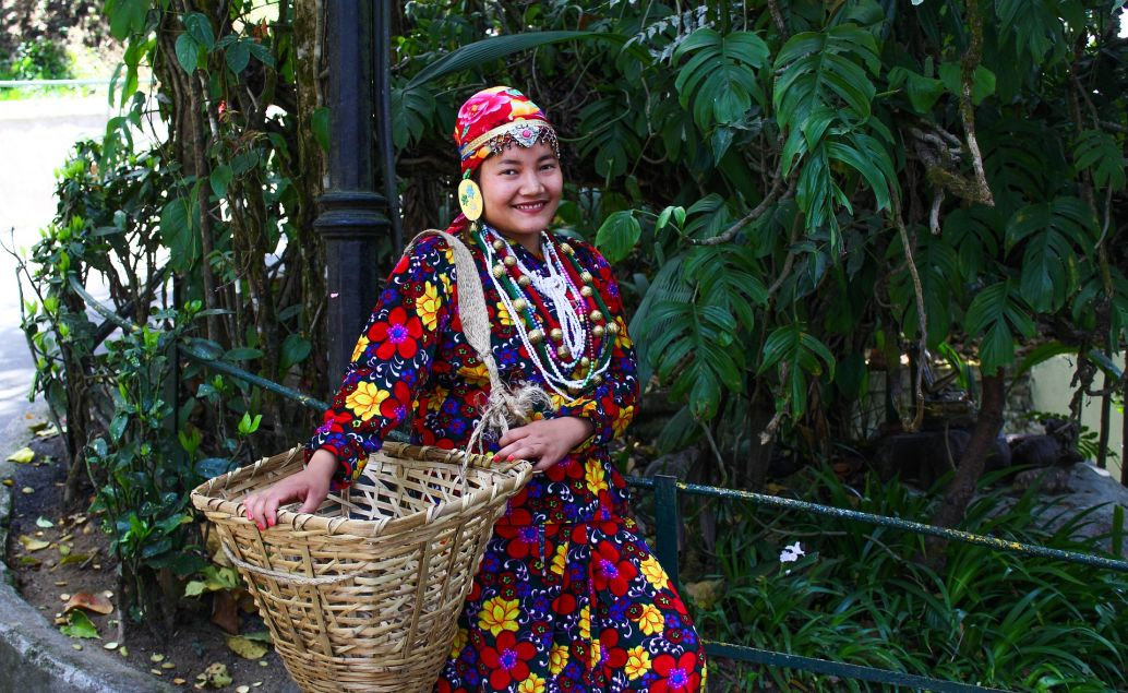 Indie a čajové plantáže Darjeelingu